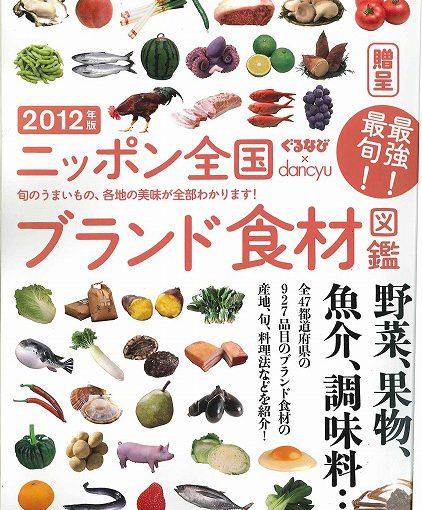 20111205092927271_0001
