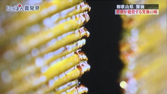 nippon-shinhakken6